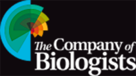 company-of-bilogists-logo-copy