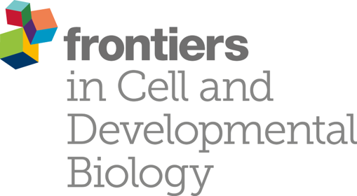 Prizes and Frontiers Special Proceeding Issue – The